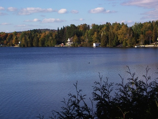 View of the lake with trees and clouds in the background