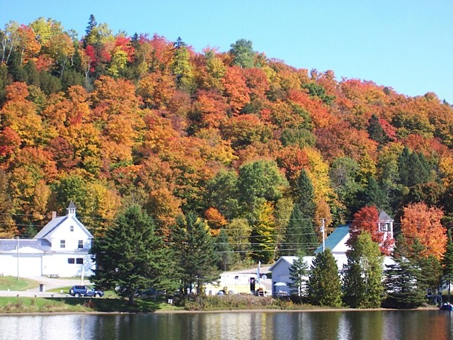 Tall hill covered with autumn colored trees and white buildings at its base
